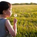 kohen-the-dandilion_by-nyssa-badger_winner-2009_people-environment-2