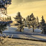 ormay_winter-morning-2